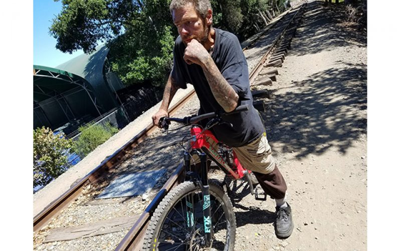 Grand Theft Suspect Arrested after Two Bikes Stolen