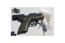 Various Searches Yield Gun, Drugs