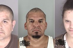 Five Busted on Guns & Drug Violations