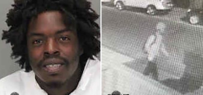 Arson suspect sought in four suspect fires
