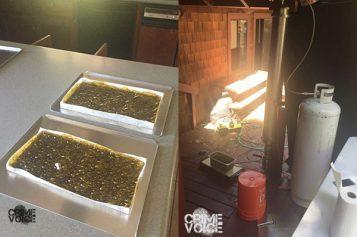 Honey Oil Lab Bust Yields 3 Arrests