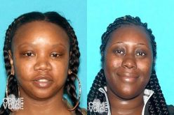LAPD Seeks San Fernando Valley Robbery/Grand Theft Suspects