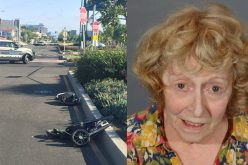 Donna Marie Higgins Finally Pleads Guilty For Pedestrian Hit-And-Run Death, Sentenced to Prison