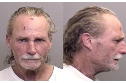 Man arrested after shooting in Mendocino County