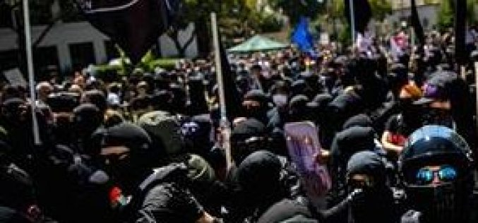 13 Arrests Made During Protests; Officer Injured, Police Hit with Paint