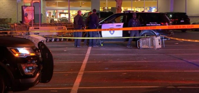 Suspected Shoplifter Accused of Slamming His Car into 2 Cops