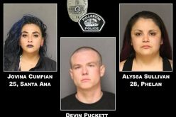 Vehicle Code Stop Yields Three Arrests