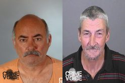 Pair Charged in Fraud, ID Theft Scheme