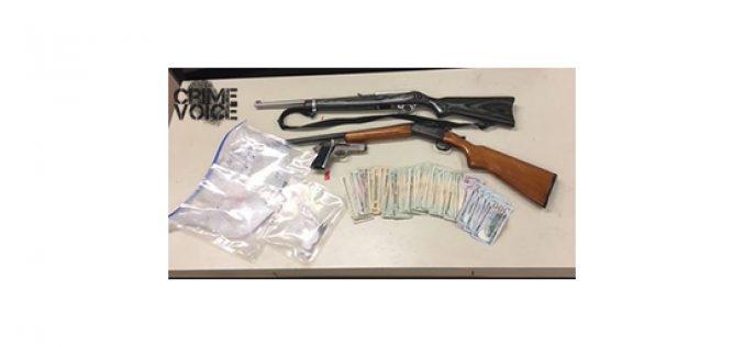Arrests for Drugs, Guns
