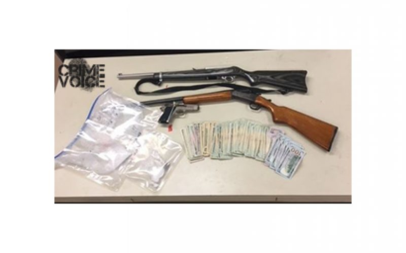 Arrests for Drugs, Guns