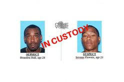 Pair Arrested for Attempted Robbery and Homicide at Pawn Shop
