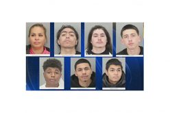 12 members of SJ gang arrested for over 30 violent robberies, carjackings