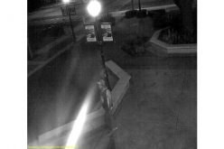 Hollister PD seeks sexual assault suspect, calls on public for help