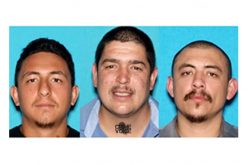 Two Arrested for Murder, Third Suspect at Large