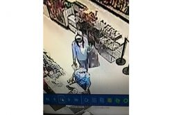 Police investigating fraudulent purchases after credit card thefts in Davis, Vacaville