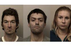Three arrested after burglary-in-progress report in El Dorado Hills