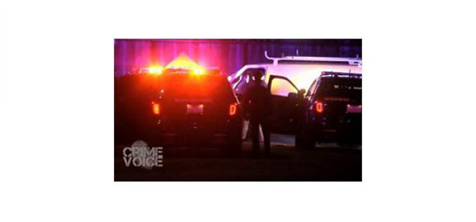 Driver Pursued by CHP Officers for 20 Miles Arrested for DUI