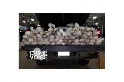 Spare Tire Conceals 65 Packages of Meth Seized at the Border