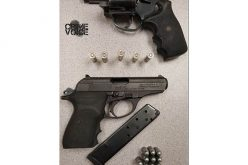 Two Stolen Guns Recovered in Car