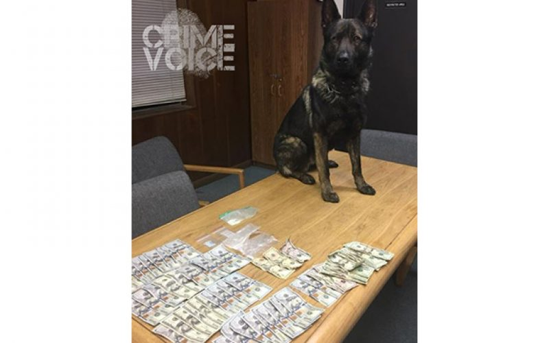 K-9 Kai Helps Arrest 3 for Drugs