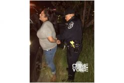 Numerous Drug Arrests on Friday Night