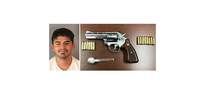 Traffic stop leads to loaded weapon, meth arrest
