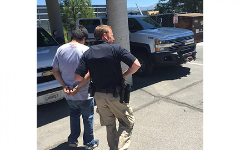 Cannabis Robbery Suspect Turned Himself In