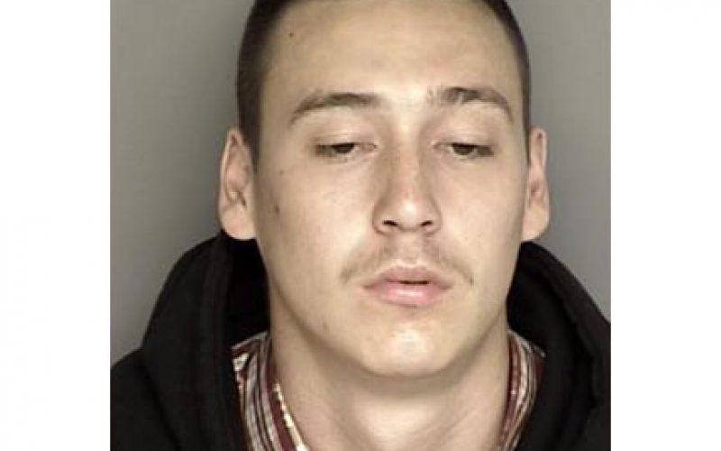 Carjacking Gang Member Nabbed in Castroville