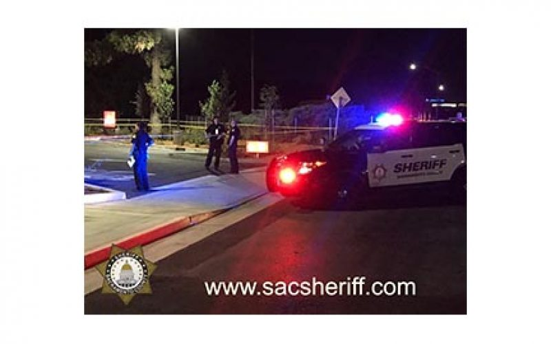 Arrest Made in Fatal Hit and Run