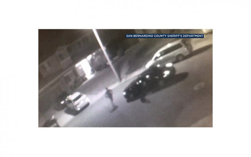 Lurking Machete-Wielding Purse Snatcher On The Run, Victims Hospitalized
