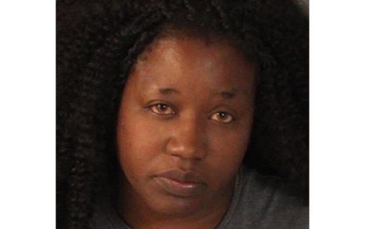 She Stole a Power Tool, Fled with Child in Car