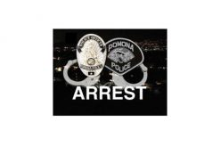 Armed Robbery and Rape By Force Suspect Arrested