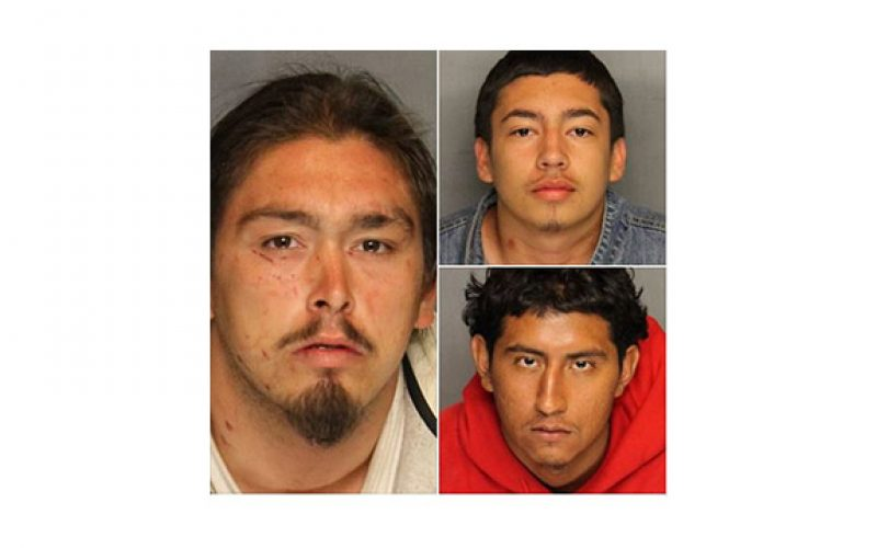 Three Perps, Three Separate Crimes in One Morning Spree