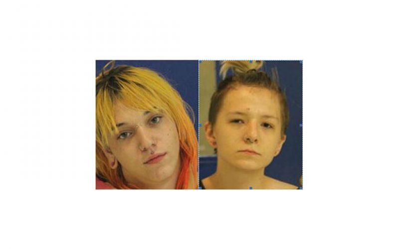 Kyri, Tyler and Friend, Teenage Burglars and Vandals
