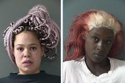 Burglary, Assault on Officer, Pursuit and then 2 Arrests