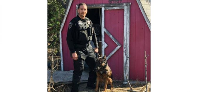 Stolen-Vehicle Suspect Ran, But Could Not Hide From K-9 Ozzy