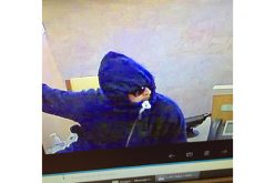 Two suspects sought in bank robbery