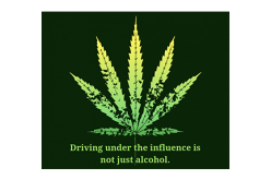 Guilty Verdict for Driving Under the Influence of Marijuana