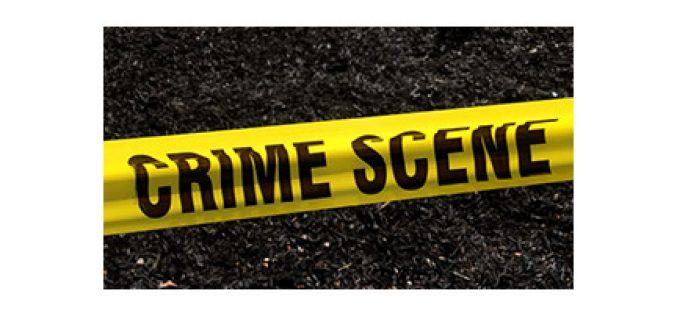 Brash Battery Burglar Busted on Christmas Day