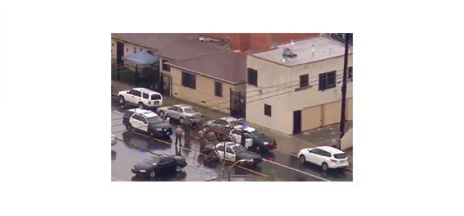 Woman tours LA in stolen car, gets arrested