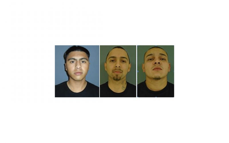 One Loaded Gun in the car, Three Arrests