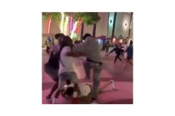 Two Arrested in River Park Brawl