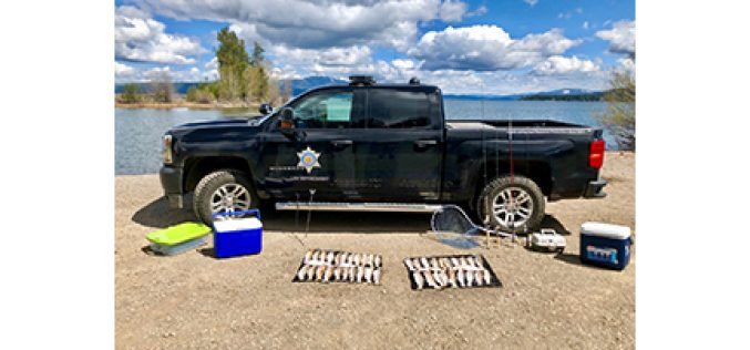 Fleeing Angler Caught with 51 Trout Above Legal Limit