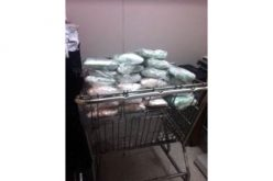 Border Patrol Canine Detection Team Discovers Meth-Smuggling Attempt