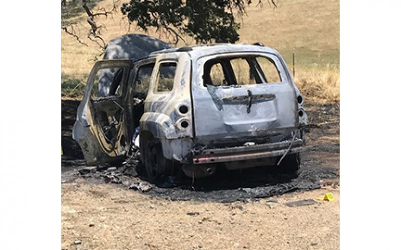 Man detained after body found in burned out vehicle