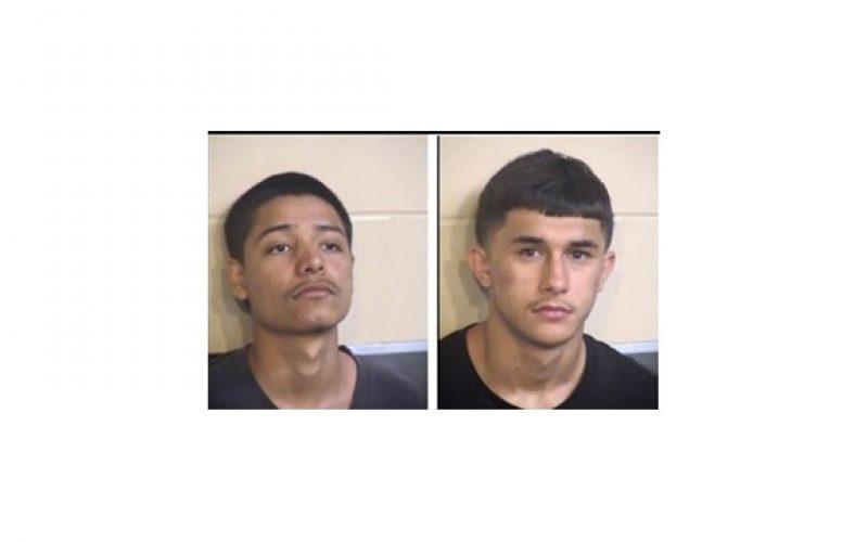 Three Teens Arrested for Avocado Lake Stabbing