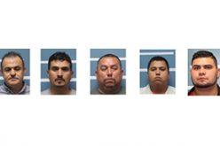 Murder Leads to Huge Marijuana Bust