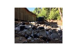 Illegal grow site with numerous HAZMAT violations