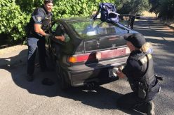 Clearlake Police: Stolen vehicle suspect spray painted car to avoid attention