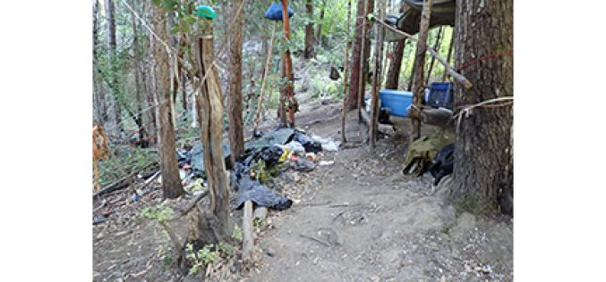 Ecologically Unfriendly Illegal Marijuana Grow Site On Public Lands